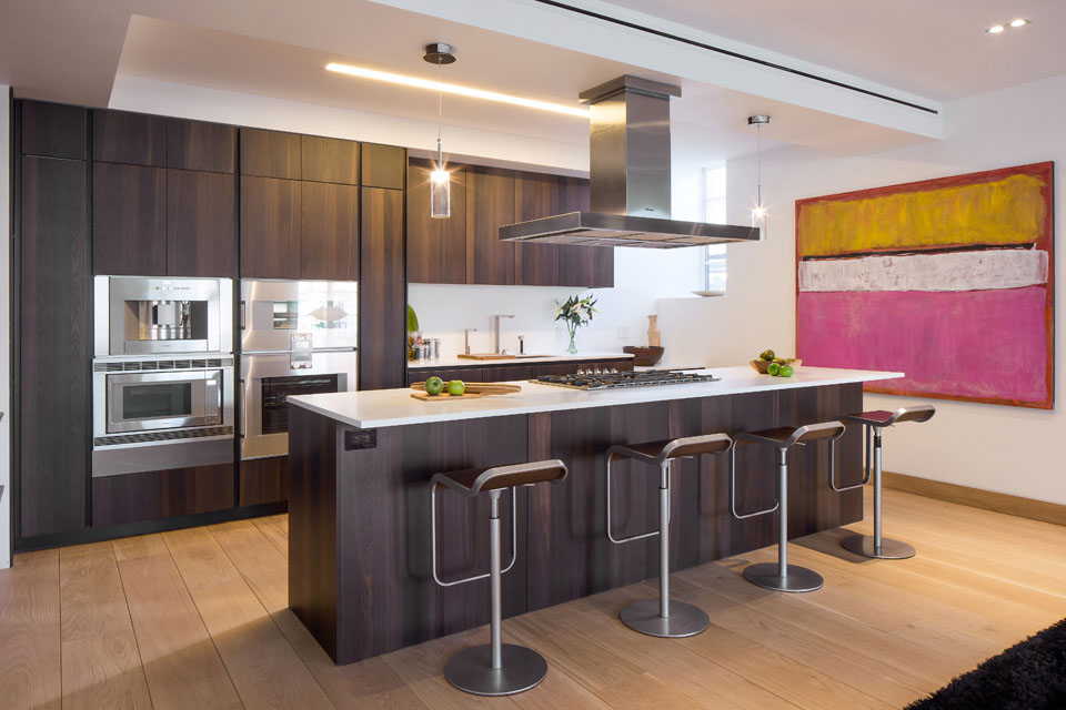 New York Apartment Modern Kitchen
