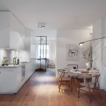 Stylish 420 Square Foot Small Apartment With Modern Scandinavian Design