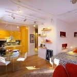 Vibrant Colors Enhance Appeal of Small Studio Apartment