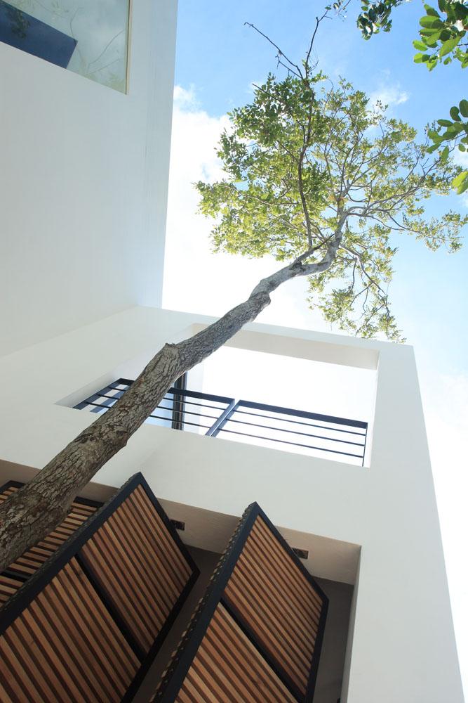 The Library Minimalist Resort Hotel In Koh Samui
