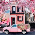 Burst of Southern Charm: Springtime in Charleston