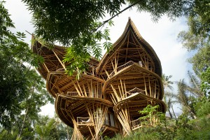 Fantasy Bamboo Tropical House