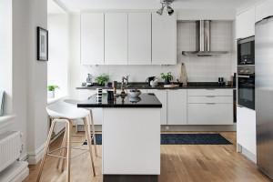 Classic Contemporary Apartment IKEA Kitchen