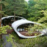 Concrete Shell Villa In The Forest