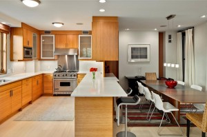 Modernist-Carriage-House