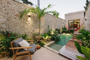 Urban Tropical Oasis