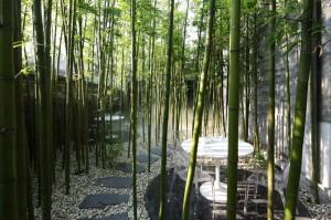 Bamboo Garden Dining