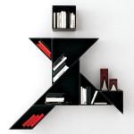Expressive Bookshelves