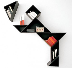 expressive-book-shelves
