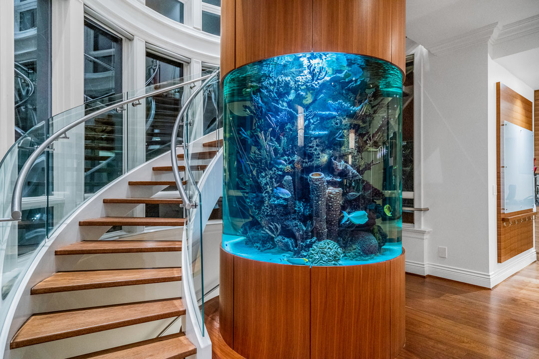 Contemporary Spiral Staircase Wrapped around a Circular Aquarium