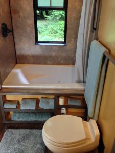 Luxury Tiny House Bathroom