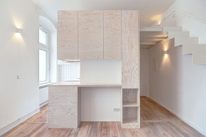 Micro Loft Apartment with Clean Design