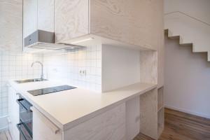 Tiny Micro Studio Apartment Kitchen