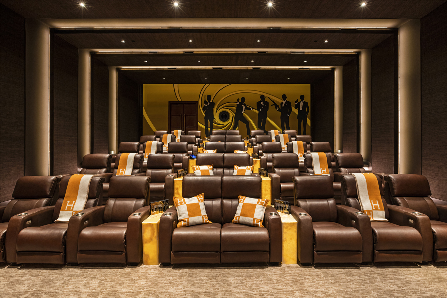 Luxury Home Cinema