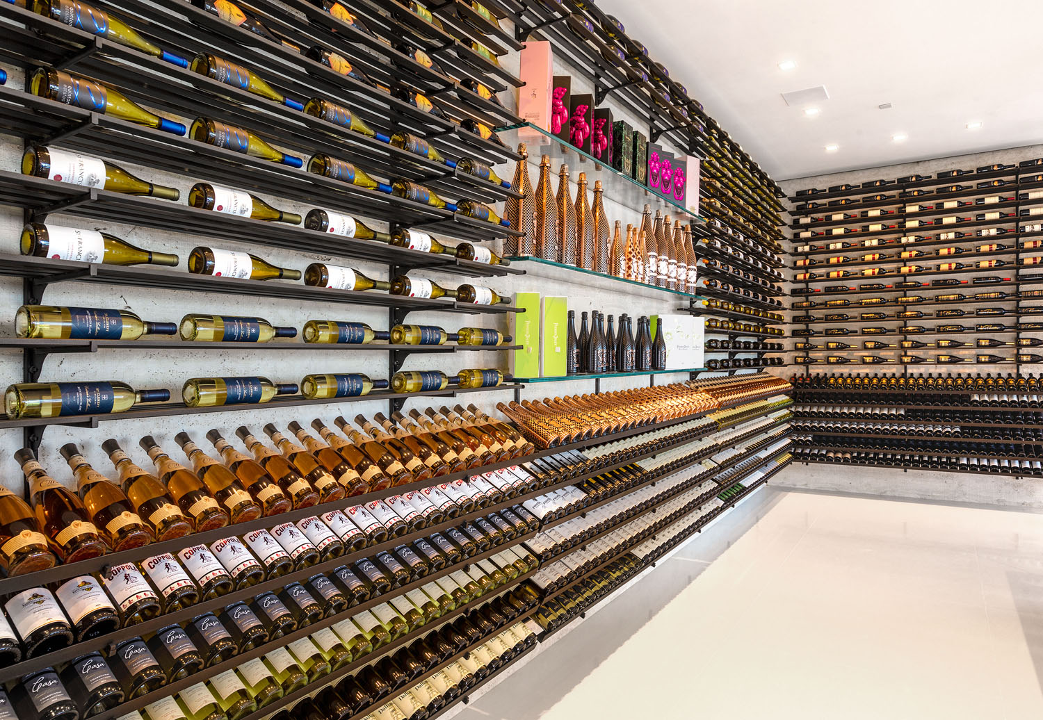 Modern Luxury Home Wine Cellar