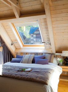 Mountain Home Bedroom with Skylight