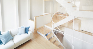 Modern Interior Decor with Natural Wood