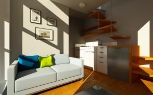 Contemporary Tiny Home