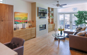 Energy Efficient Modern Home
