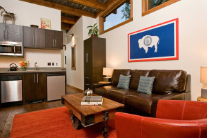 Modern Rustic Tiny House Interior