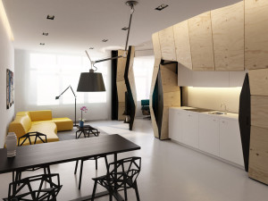 Small One Bedroom Apartment with Smart Design